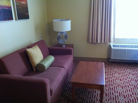 TownePlace Suites Cleveland Westlake : Sofa