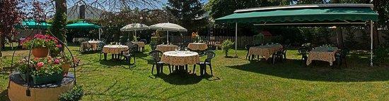 Le Dauphin Hotel: jardin ombragé