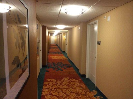 Residence Inn Ottawa Airport: Hallway