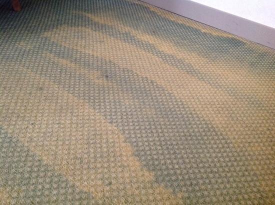 Mercure Grand Hotel Alfa Luxembourg : carpet in the room we were originally given