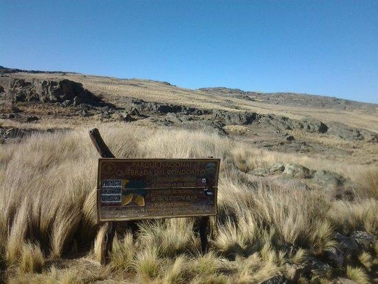 Quebrada del Rio Condorito (Condorito River's Gorge) : parque nacional quebrada del condorito