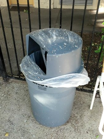 La Quinta Inn Austin Oltorf: bird poop on trash receptacle at pool