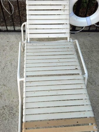 La Quinta Inn Austin Oltorf: bird poop on pool chaise lounger