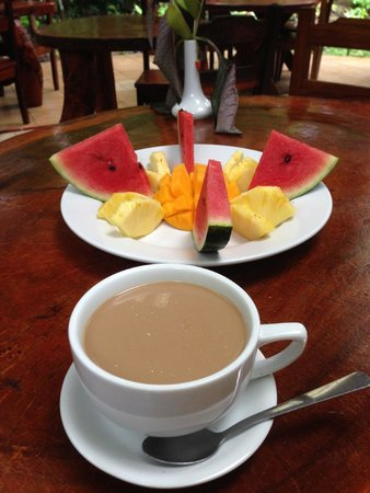 Tierra de Suenos Lodge: Delicious fruit breakfast