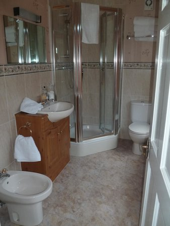 Meadowcroft Bed and Breakfast: spacious bathroom