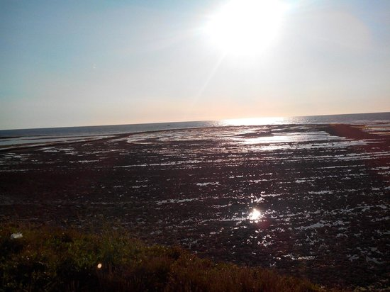 Photo coucher de soleil foto di camping au port punay - Camping au port punay chatelaillon plage ...