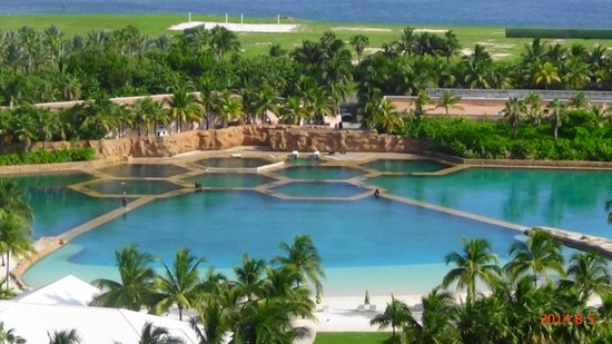 The Cove Atlantis, Autograph Collection: Dolphin Cay from room