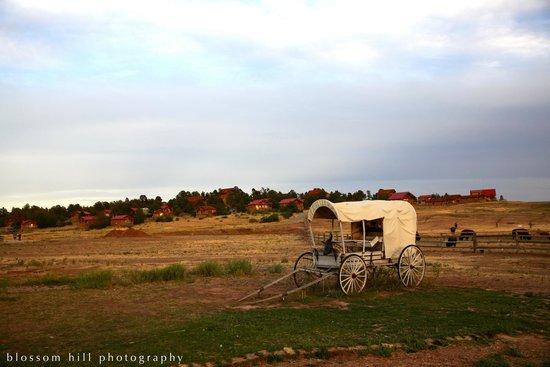 Zion Mountain Ranch : Views