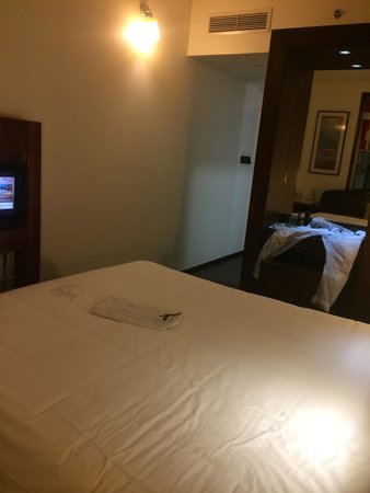 Ibis World Trade Centre Dubai: The room