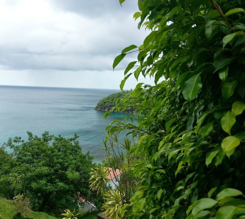 Cosol Tours: St. Lucia