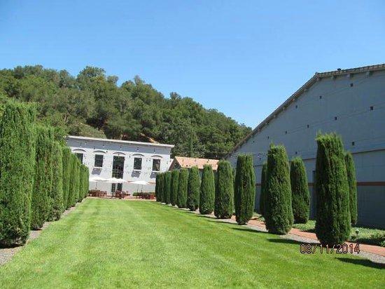 Clos Pegase Winery: Clos Pegase Courtyard