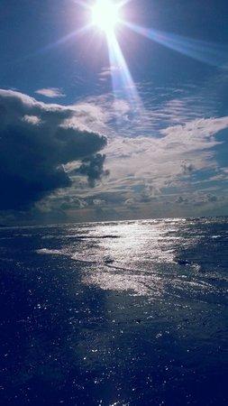 Plage de Deauville : La mer