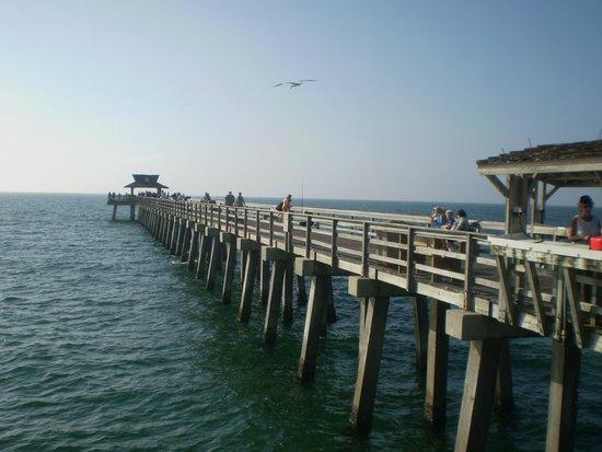 Naples Pier : extensão