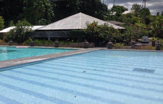 Thalassa PADI Dive Resort: Pool
