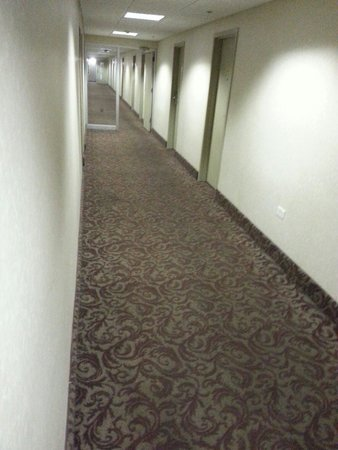 Millennium Buffalo: I love stained carpets in my hotels!