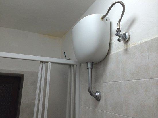 Muffa in bagno anche vicino alla vaschetta dello scarico - Foto di ...