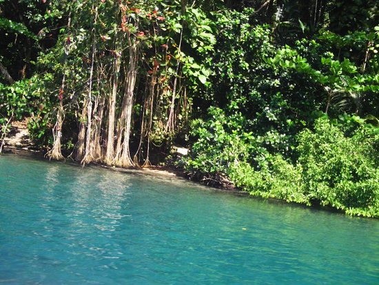 Blue Lagoon : такой цвет