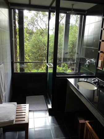 Heritance Kandalama: bathroom - shower with a view!