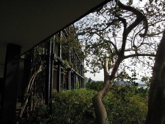 Heritance Kandalama: eco-hotel