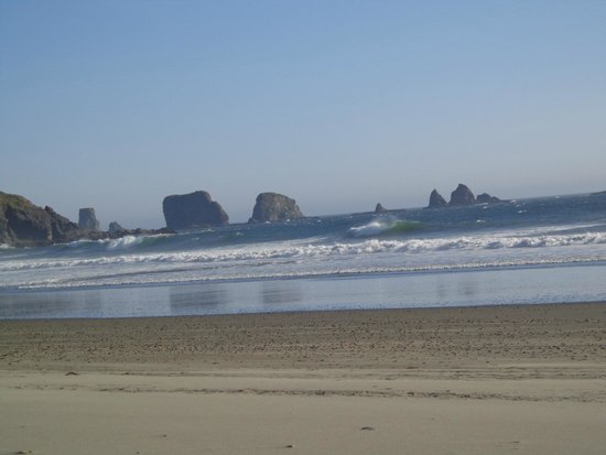 Quileute Oceanside Resort: The beach