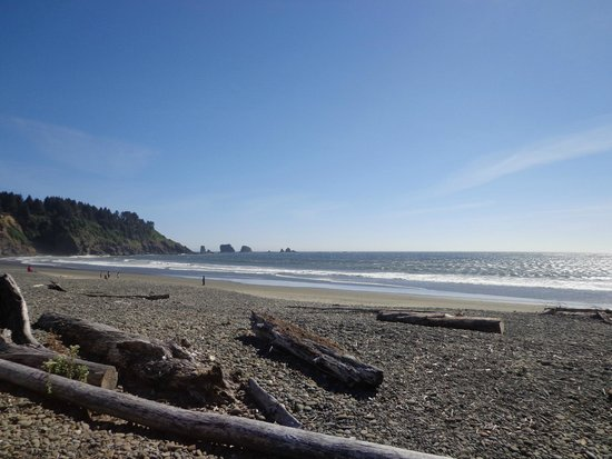 Quileute Oceanside Resort: beach