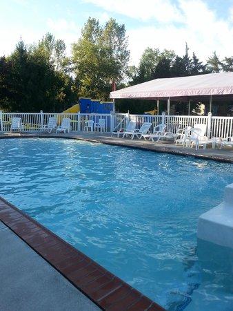 Ponderosa Campground: Pool!