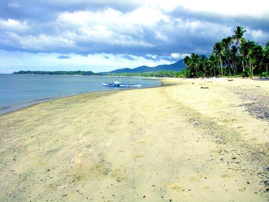 Phaidon Beach Resort: Phaidon Beach