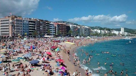 Lloret Beach: Beach Life