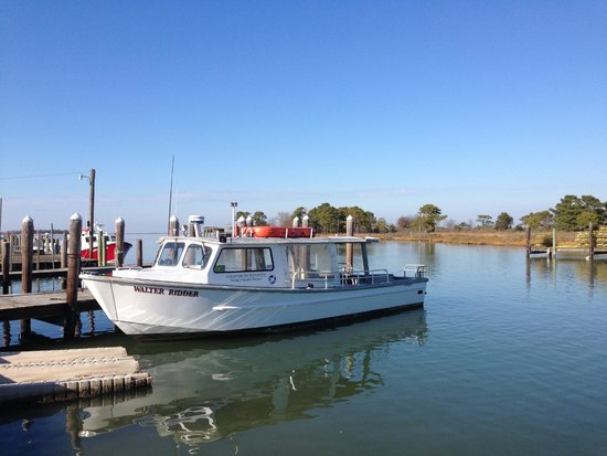 Smith Island Inn: The Waterman's watercraft for crabs and oysters. A trip back to yesteryear.