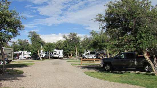 Montpelier Creek KOA: a view of the camp ground