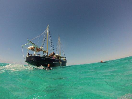 Falla Reef Trips: The Falla in all her glory