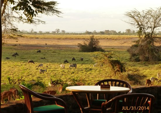 Amboseli Serena Safari Lodge : from the back terrace
