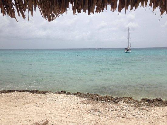 Eagle Beach: Posto molto bello e un mare cristallino