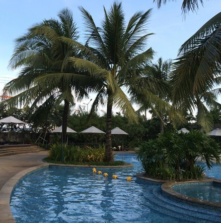 Radisson Blu Cebu : Pool landscape