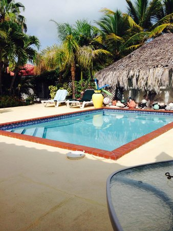 Harbour Club Villas & Marina: Pool allllll to myself!  Love it!!!