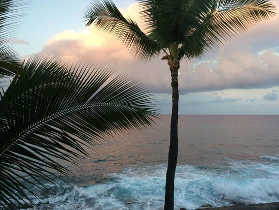 Kona Tiki Hotel: The view from our bed!