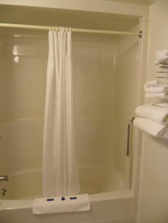 Bay Hill Inns and Suites : BATHROOM