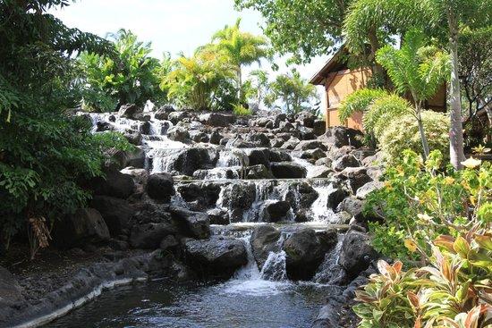 Fairmont Orchid, Hawaii: Fairmont Orchid Hawaii