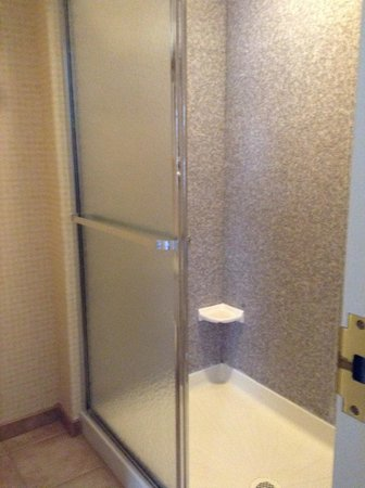 Homewood Suites by Hilton Edgewater - NYC Area : シャワーのみ お湯はたっぷりでます