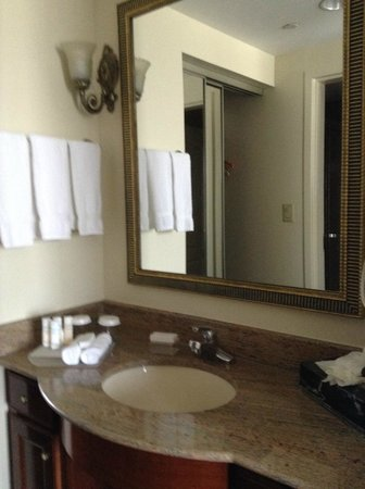 Homewood Suites by Hilton Edgewater - NYC Area: 洗面所