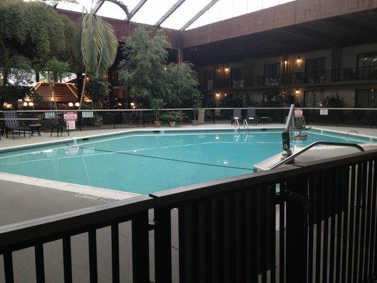 Boxboro Regency Hotel & Conference Center: Heated indoor pool