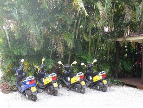 Sea Change Villas: Onsite Scooters