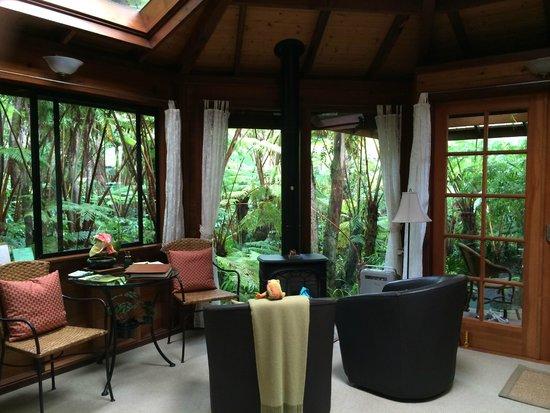 Volcano Rainforest Retreat: natural light filters through
