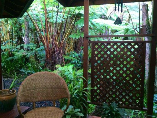 Volcano Rainforest Retreat: Balcony