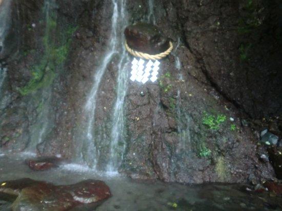 Tenseien: 庭園の滝