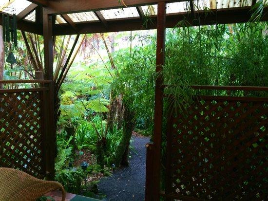 Volcano Rainforest Retreat: looking outside to balcony