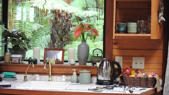 Volcano Rainforest Retreat: living arrea