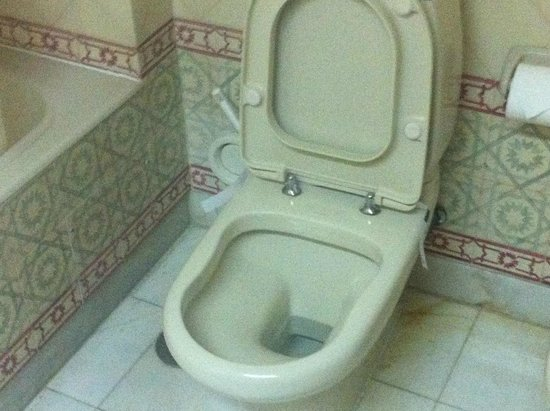 Hotel Oriental : Ancient toilet suite for a 'luxury' hotel