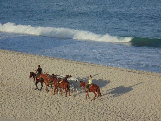 Casa Costa Azul : Horseback riding on the beach!
