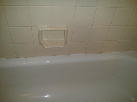 Hampton Inn White River Junction : Mildew growing in shower